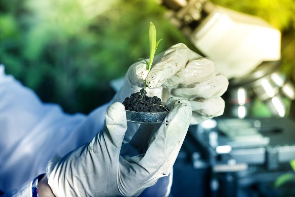 plante-actif-naturel-ogenes